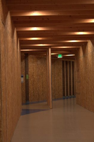 Introduction Of The Plywood Maze